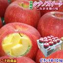 【予約】【送料無料】これが本場の味!長野県産 シナノスイート Cランク家庭用約10kg(24-36玉)訳あり(キズ、色ムラ…