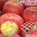 【予約】【送料無料】これが本場の味!長野県産 シナノスイート Bランク(マル特)約3kg(8-11玉)濃厚な甘味と香りで…