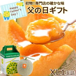 父の日 富良野メロン XL1玉詰(約2.0kg)送料無料 メロン 初物 6月出荷!朝もぎ ギフトプレゼント 赤肉メロン 果物 フルーツ