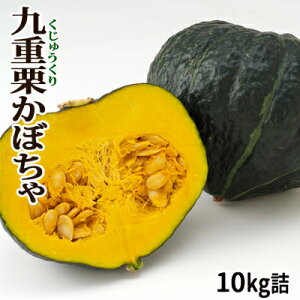 かぼちゃ 九重栗 約10kg詰 [4玉〜8玉入]北海道 富良野産 送料無料★メロン農家が作る、栗みたいな カボチャ♪