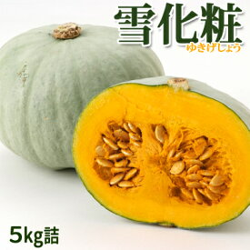 かぼちゃ北海道 富良野産 雪化粧 5kg詰[2玉〜3玉入]メロン農家が作る! 人気のホワイトかぼちゃ♪【10月中旬発送開始予定】予約 送料無料