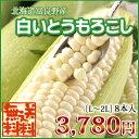 【送料無料】北海道富良野産・白いとうもろこし♪一度食べたらクセになるぅ!L〜2L混サイズ皮付き8本入!まるで果物みたいなフルーツコーン♪05P03Sep16