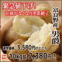 緊急値下げ!!【送料無料】北海道 富良野産じゃがいも 男爵 約10kg 秀品