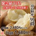 緊急値下げ!!【送料無料】北海道 富良野産じゃがいも 男爵 約5kg 秀品