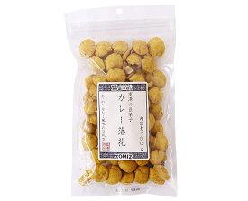 富澤の豆菓子 カレー落花 / 100g TOMIZ cuoca(富澤商店・クオカ)