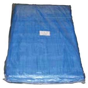 TA1013457 ブルーシート 10×10 #2200 10m×10m 2枚