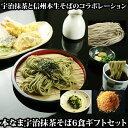 お中元 父の日プレゼント 茶そば 6食ギフトセット、野沢菜、七味付セット 宇治抹茶 生そば 生蕎麦 乾麺では味わえな…