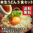 母の日 特製本生ざるうどん 5食(※麺つゆは付きません) 送料無料 業務用