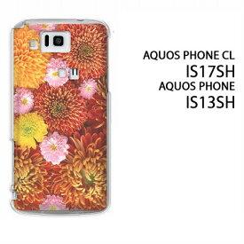 ゆうパケ送料無料【au AQUOS PHONE CL IS17SH/IS13SH用ケース】【is17sh/is13shケース】[ケース/カバー/CASE/ケ−ス][アクセサリー/スマホケース/スマートフォン用カバー]【キク(A)/is17sh-913】