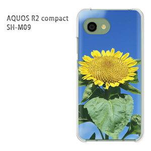 ゆうパケ送料無料 AQUOS R2 compact SH-M09ソフトバンク アクオス R2 コンパクト aquosr2 compact shm09クリア 透明 スマホケース カバー ハード ポリカーボネート[花・ひまわり(黄)/aquosr2compact-pc-new1534]