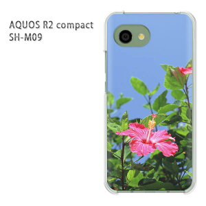 ゆうパケ送料無料 AQUOS R2 compact SH-M09ソフトバンク アクオス R2 コンパクト aquosr2 compact shm09クリア 透明 スマホケース カバー ハード ポリカーボネート[花・ハイビスカス(ピンク)/aquosr2compact-pc-n