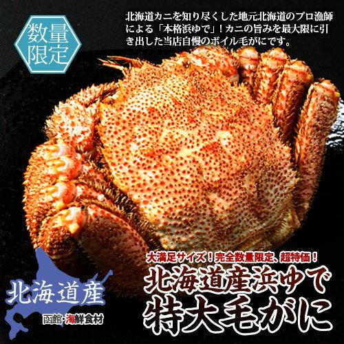 【送料無料】北海道産ボイル毛がに 600g×2尾【かに】【カニ】【蟹】【毛ガニ】【北海道】【正規品】【お得】