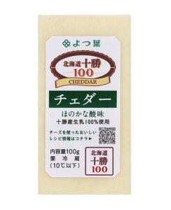 よつ葉 チェダーチーズ 100g×10個入り