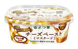よつ葉パンにぬって楽しむチーズペースト マスタード 100g×3