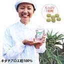 キダチアロエ錠剤100%×180粒入り アロエ 健康 美容 肌ケア サプリメント サプリ