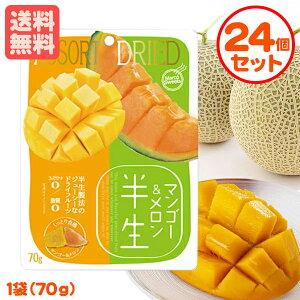 半生フルーツ マンゴー&メロン 70g×24個 しっとり食感 ドライフルーツ まとめ割引 送料無料