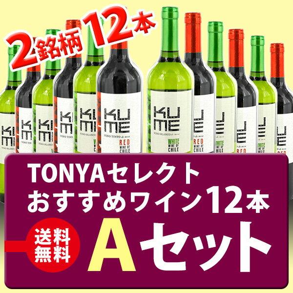 ◆【送料無料】 おすすめワイン12本 Aセット(チリ)