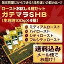 【メール便・配達日時指定不可】 ガテマラローストお試し4種メール便 (解説付)
