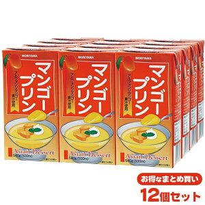 守山アジアンデザートマンゴープリン (500mlx12個)【賞味期限残25日以上をお届けします】 送料無料