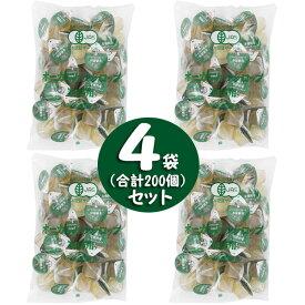 業務用 有機栽培オーガニックシロップ (15g×50個入)×4袋