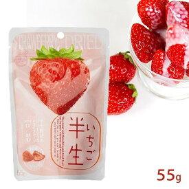 半生フルーツ いちご 55g しっとり食感 ドライフルーツ