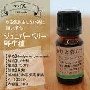 ジュニパーベリー(野生種)10mlアロマオイル/エッセンシャルオイル/精油