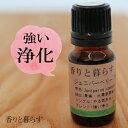 ジュニパーベリー (野生種)10ml ジュニパーベリーオイル アロマ アロマオイル エッセンシャルオイル 精油 【香りと…