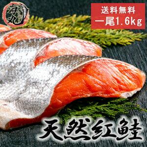 【お得なクーポンあり!】遅れてごめんね 敬老の日 天然 紅鮭 切身20切 1尾分 1.6kg 北洋産 甘塩 べにじゃけ 鮭 紅さけ しゃけ べにさけ 送料無料 お祝い 海鮮 おうち時間 北海道 贈り物 贈答