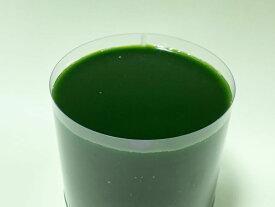 グリーンウォーター クロレラ水 500ml スーパー生クロレラ使用 説明書付属