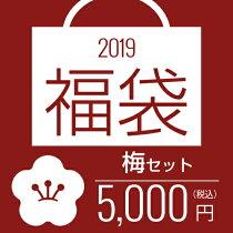 【福袋・梅】サラツヤ美髪福袋【5000円】【送料無料】