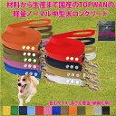 中型犬ロングリード25m 専用ポーチセット(ノーマル)トップワン 犬 広場で遊べます! しつけ教室 愛犬訓練用