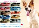 刺繍迷子首輪 Mサイズ 軽量迷子札 小型犬 中型犬 名前入 名入れ 電話番号 ネーム首輪  首輪タイプの迷子札 迷子札付きチョーカー Dカンを付けなければ大型犬の迷子札としても使えます。刺繍の関係で首