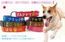 犬 迷子札 首輪 刺繍 刺繍迷子札首輪 Lサイズ 日本製 中型犬 大型犬 名前入 名入れ 電話番号 首輪 ネーム首輪 迷子札付きチョーカー ネ…