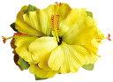 フラダンス衣装 髪飾り 花飾り ハイビスカス ヘアクリップ レイ イベント フラ CL-01-WT ラージハイビスカスクリップ  イエロー 黄
