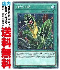 【中古】 [Super] 捕食活動 (捕食植物1_通常魔法/DP22-JP047)