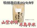 木島平村 農村木島平株式会社 特別栽培米「山紫水明 木島平米」10kg