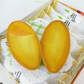 【オカザキ紀芳庵】和歌山有田みかんとチーズのタルトケーキ(9個入)