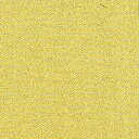 Gold nuno01