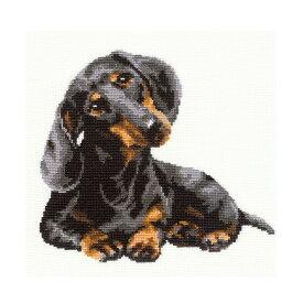 RIOLISクロスステッチ刺繍キット No.906 「Daschound」 (ダックスフント 犬) 【海外取り寄せ/納期30〜60日程度】