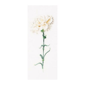Thea Gouverneur クロスステッチ刺繍キットNo.466 「Carnation White」(白いカーネーション 花) オランダ テア・グーヴェルヌール 【取り寄せ/納期40〜80日程度】