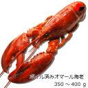 【冷凍】ボイル済みオマール海老 350g 4尾セット