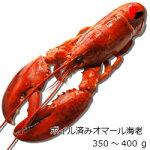 【冷凍】ボイル済みオマール海老350g4尾セット