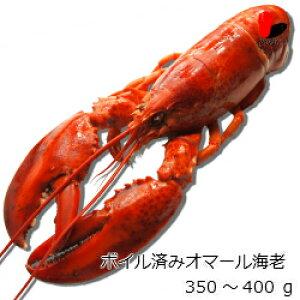 【冷凍】ボイル済みオマール海老 350〜400g 10尾セット