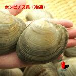 【冷凍】ホンビノス貝5キロ80-120g(一個当たり)