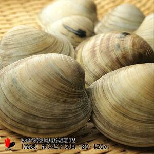【冷凍】ホンビノス貝 3キロ80-120g(一個当たり)