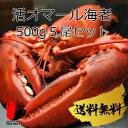 【活】【送料無料】活オマール海老 500g 5尾セット【オマール海老】【アメリカンロブスター】