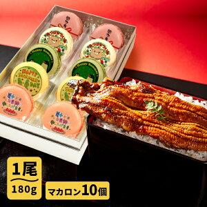 送料無料 父の日 お中元 誕生日 人気のお取り寄せ ギフト プレゼント ごかせ川の鰻 180g×1本 休職 メッセージマカロン10個セット 国産 うなぎ ギフト