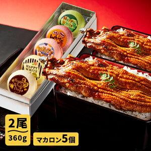 送料無料 父の日 お中元 誕生日 人気のお取り寄せ ギフト プレゼント お取り寄せグルメ 大阪の名店ごかせ川のうなぎ 180g×2本 スイーツの名店フォチェッタのホワイトデー メッセージマカロ