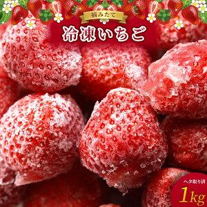 【送料無料】【シーズン限定価格】【高知県産】【産地直送】【さがほのか】冷凍いちご 1kg