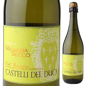 【6本〜送料無料】カステッリ デル ドゥーカ マルヴァジア セッコ フリッツァンテ 2016 750ml [微発泡白]Castelli Del Duca Malvasia Secco Frizzante [マルヴァジーア]